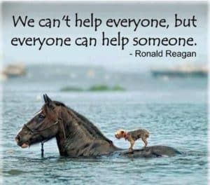Everyone can help someone quote