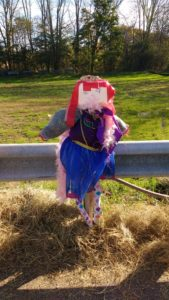 Build a Scarecrow Day Oct 28, 2017 Easton Lions Yardley Wood Rink
