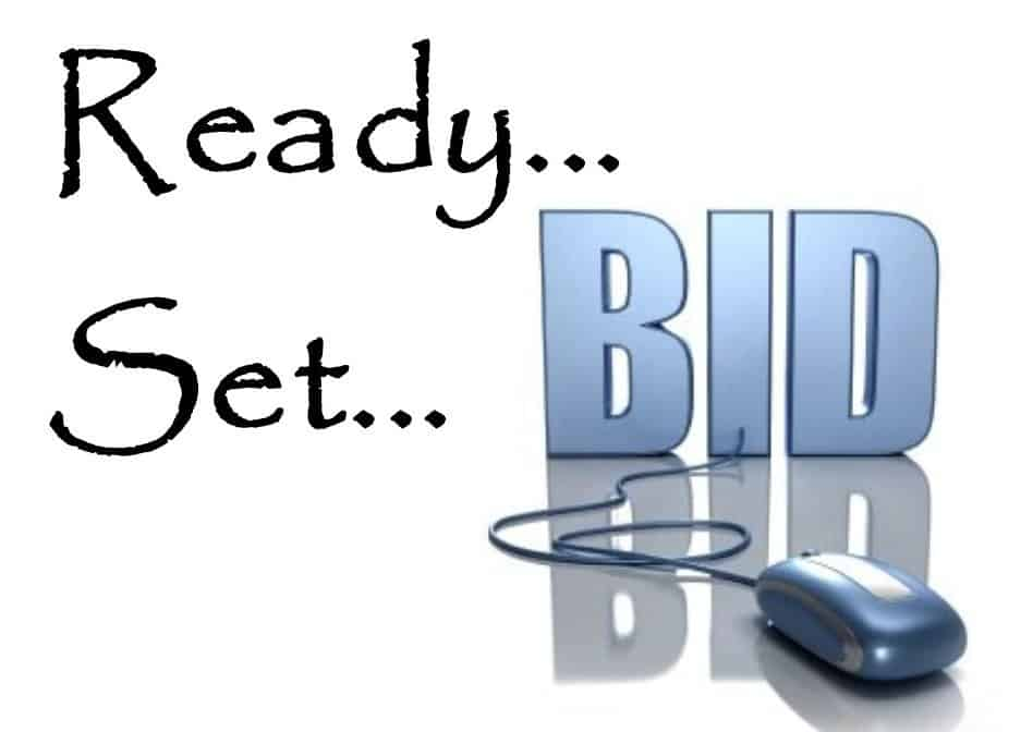 Ready, Set, BID online using a mouse.
