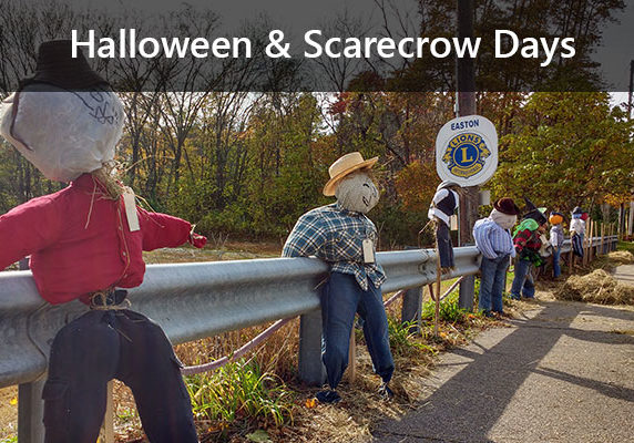Rowof scarecrows on Build a Scarecrow Day.